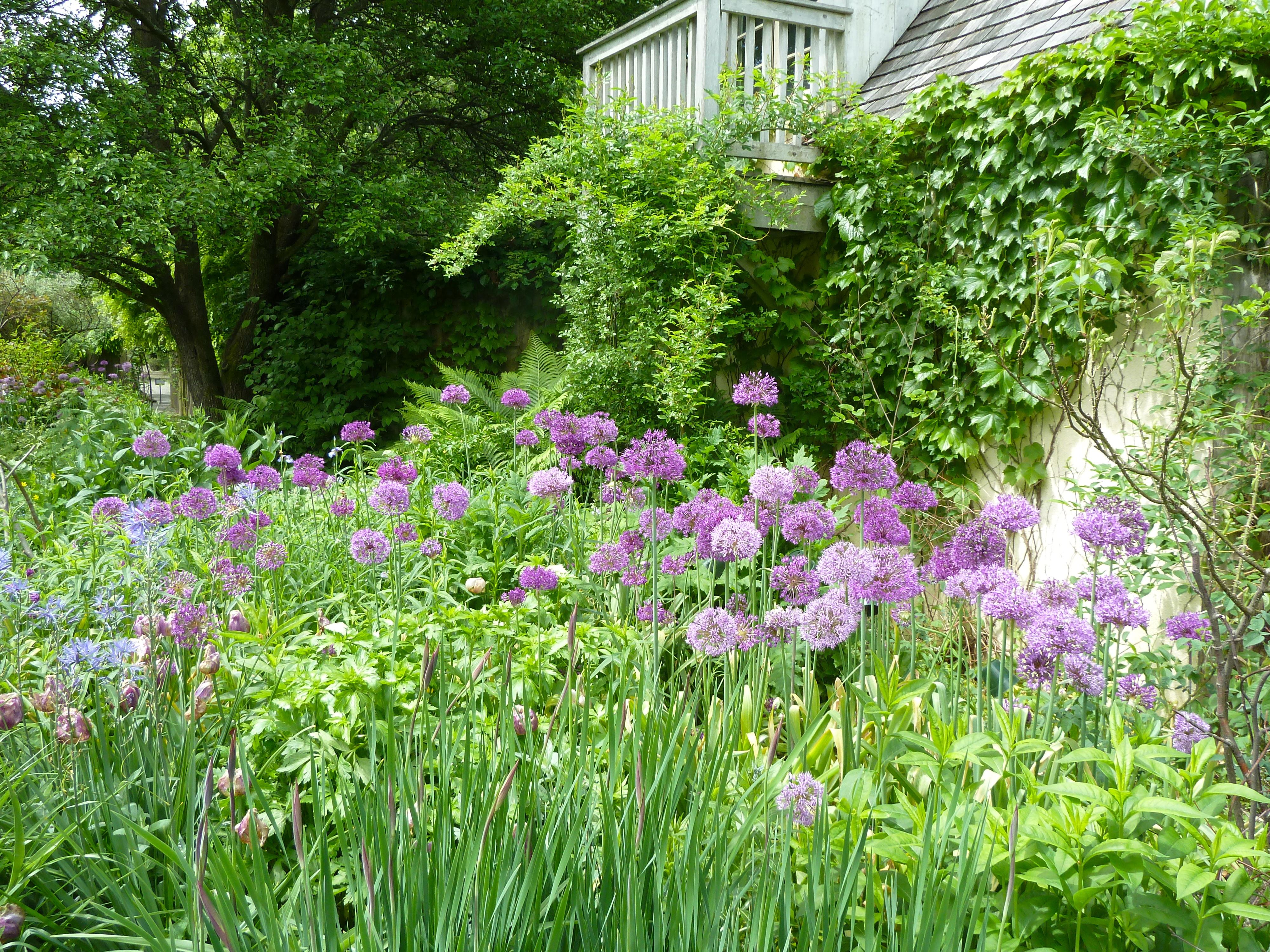 Stonecrop Gardens The Flourists Notebook